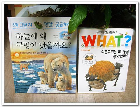 [어린이 지식서 비교하며 읽기] 왜 그런지 궁금해요 와 what 시리즈
