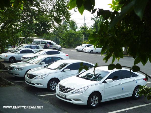 세계자동차제주박물관 주차장 찌질카