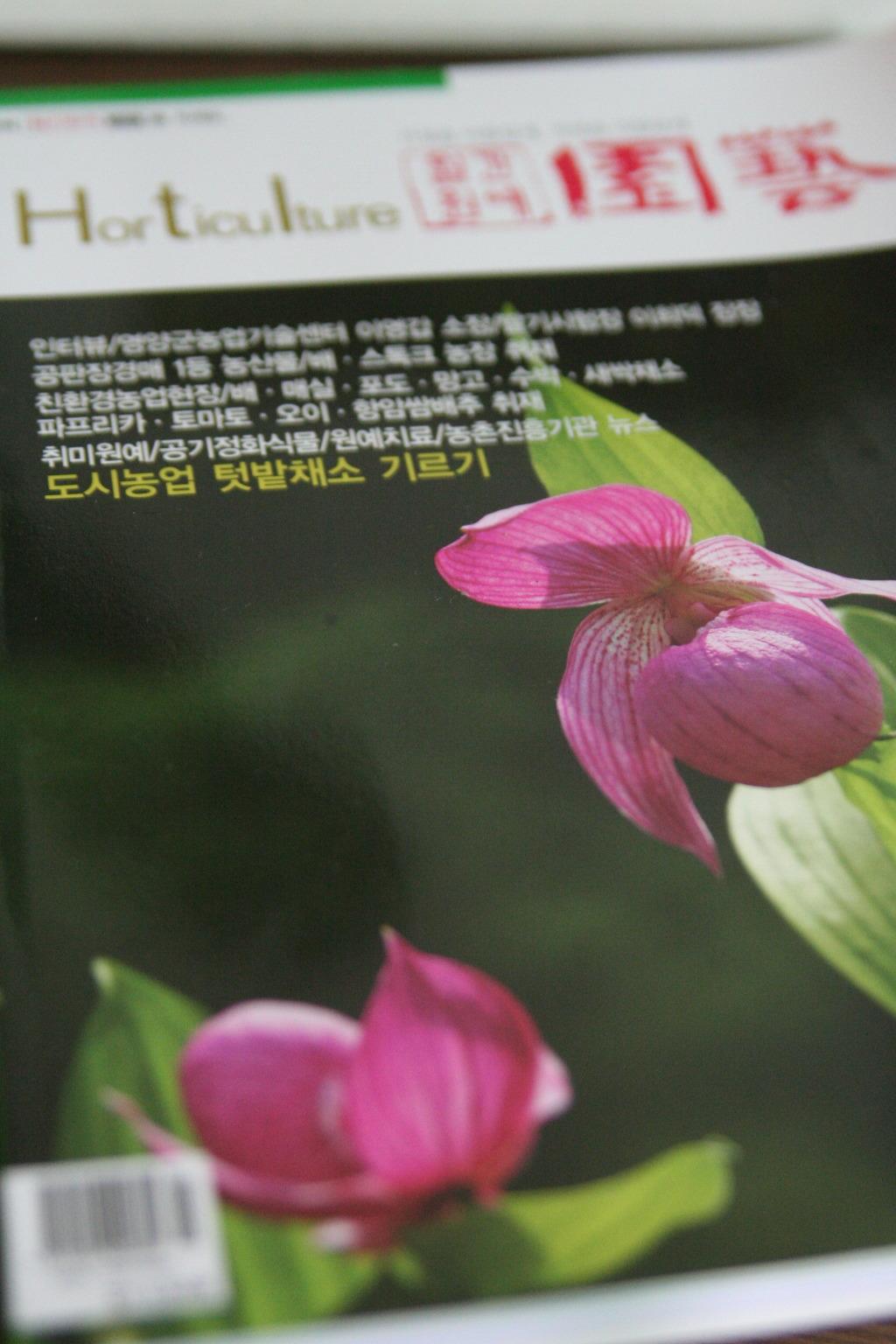 베란다텃밭 블로거, 잡지에 실렸네요 ^^