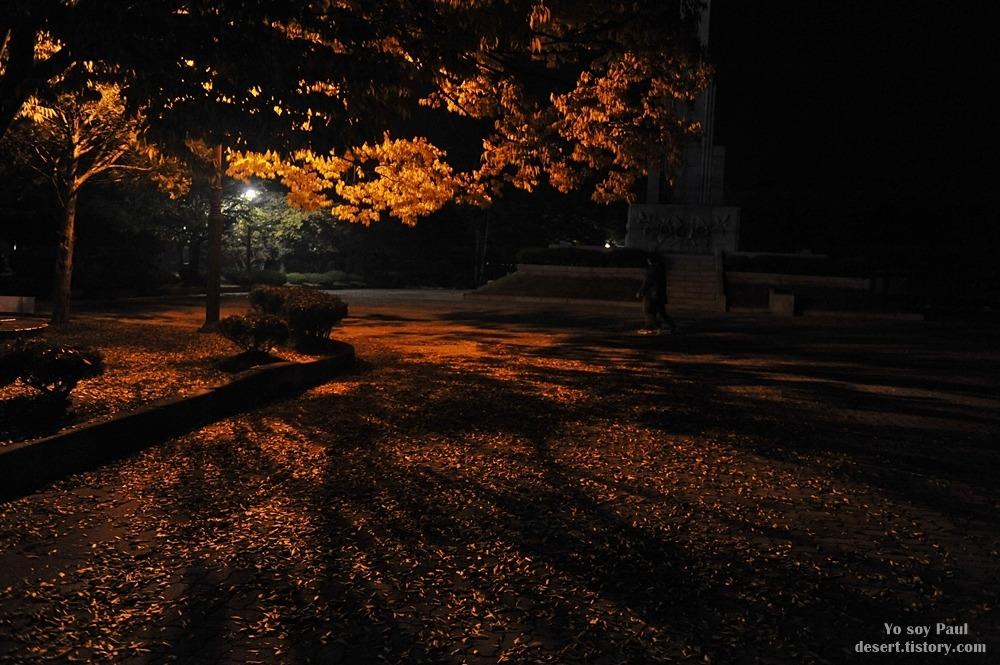 늦은 밤에 들렸던 당진 삽교호 관광지, 삽교천 (揷橋湖,  Sapgyocheon)