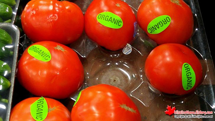 유기농 토마토(Organic tomato)