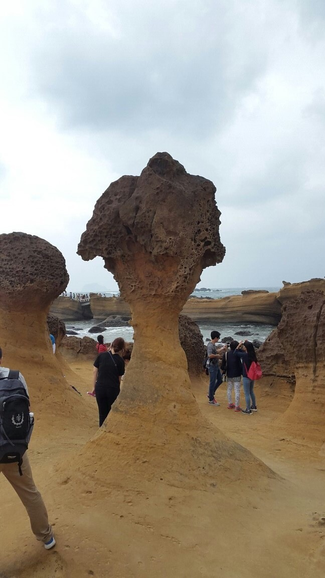 대만 가족여행! 예류지질공원