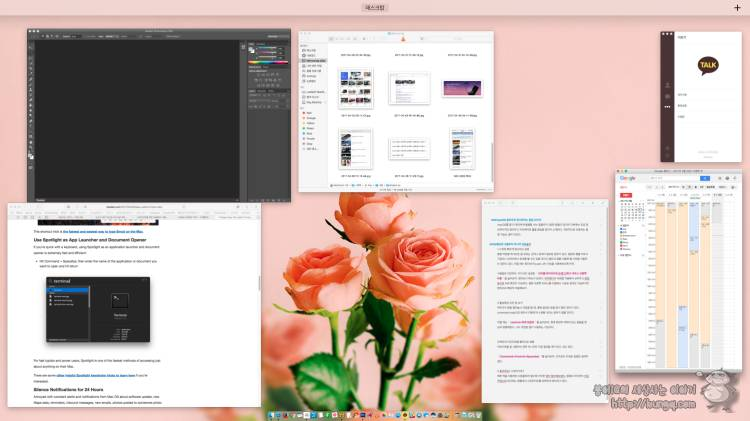 맥오에스, 팁, 꿀팁, 사용법, macOS, tips, tip