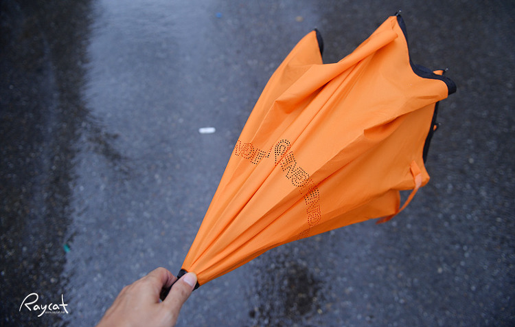 레그넷 우산