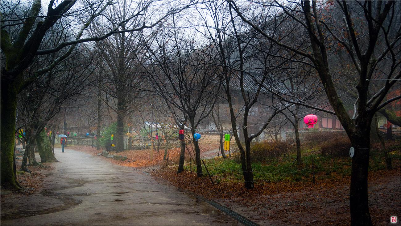 [삼성NX300] 비에 젖은 강천사 _ 순창<2>