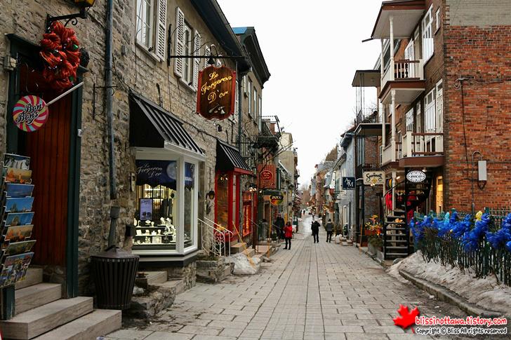 캐나다 동부 퀘벡시티 여행 프티 샹플랭 거리