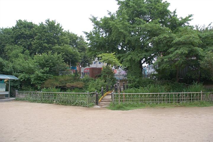 신기초등학교 생태연못