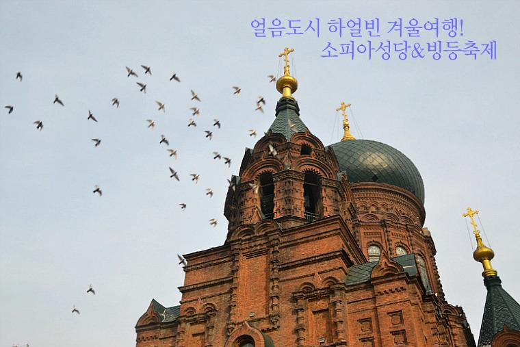 얼음도시 하얼빈(哈尔滨) 겨울여행! 소피아성당&빙등축제