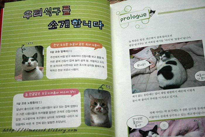 고양이책, 고양이는 해치지 않아요, 고양이 책, 고양이 정보, 고양이책 추천, 고양이 웹툰, 고양이 포토튠
