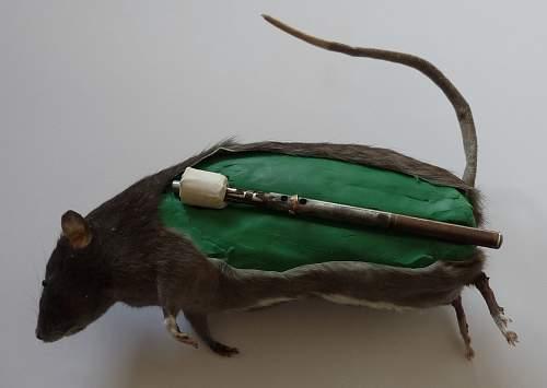 생쥐폭탄 Exploding Rats