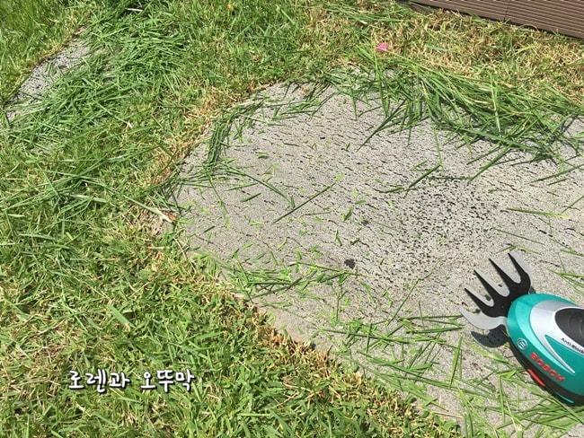 보쉬 충전용 잔디깎기! 모서리 잔디가 시원하게 제거되네19