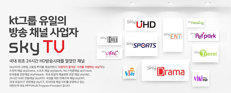 kt그룹 유일의 방송채널 사업자 sky tv