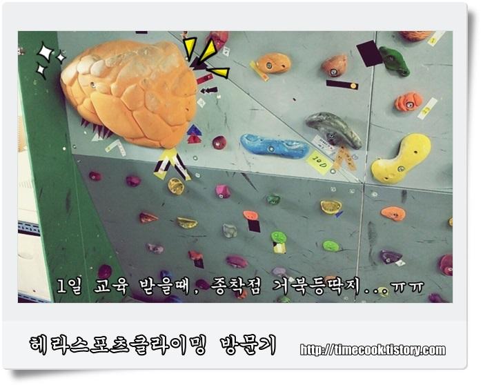 스포츠클라이밍, 실내클라이밍, 헤라스포츠클라이밍, 클라이밍, 실내클라이밍 배우기, 서울 실내클라이밍