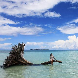 팔라우의 청초한 바다
