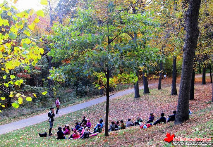 몬트리올 몽로열 공원
