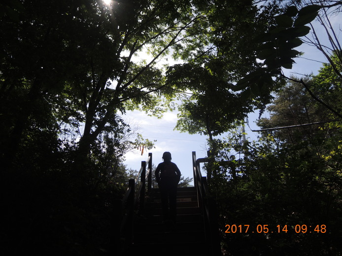 비슬산 종주 등산코스