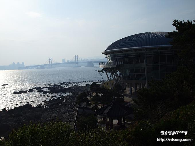 부산 동백섬의 누리마루,부산당일여행