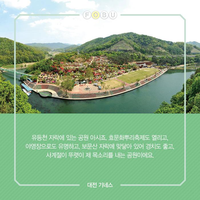 뿌리찾는 여행, 한국족보박물관