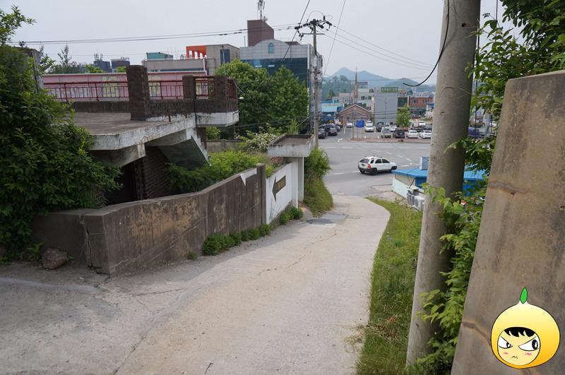 충남 공주 전국 5대 짬뽕맛집 동해원