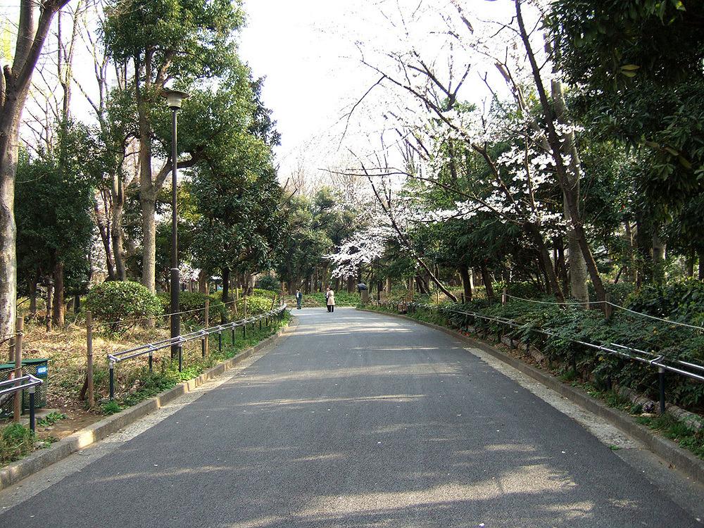 일본여행 - 다음 이야기 : 27430950513CB87F344E87