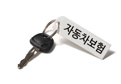 자동차보험 운전경력 인정제