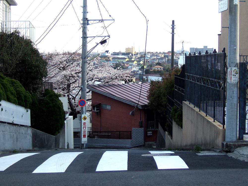 일본여행 - 그 다음 다음의 이야기 : 2743C150513CBA7F34FEC6