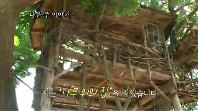 인간극장 나무위의 집의 모습