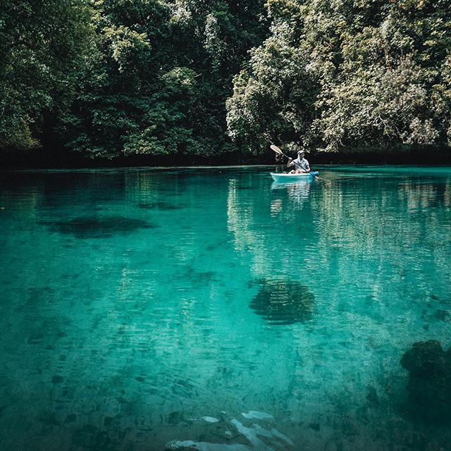 팔라우의 신비로운 바다