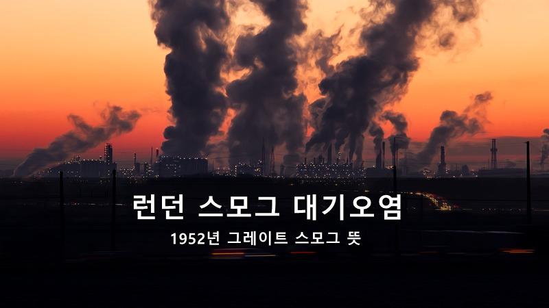 런던 스모그 대기오염 사건 - 1952년 그레이트 스모그 뜻
