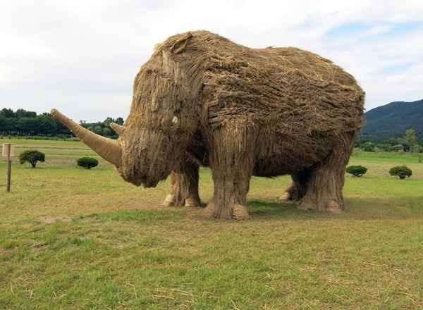 대형 코뿔소