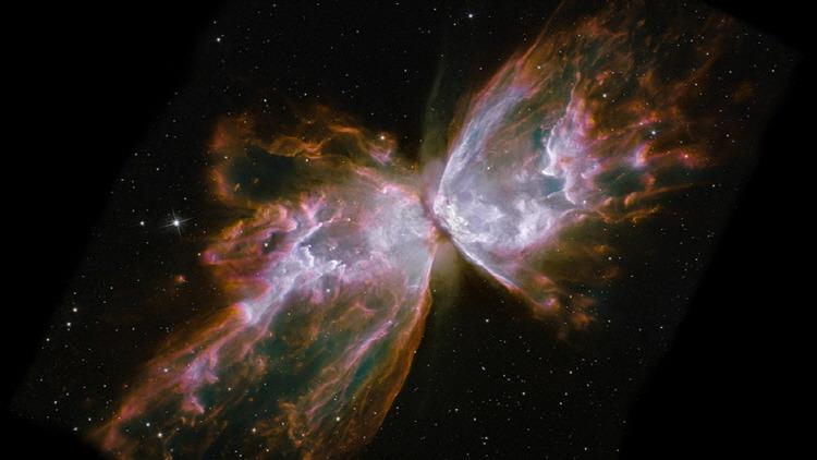 The Butterfly Nebula
