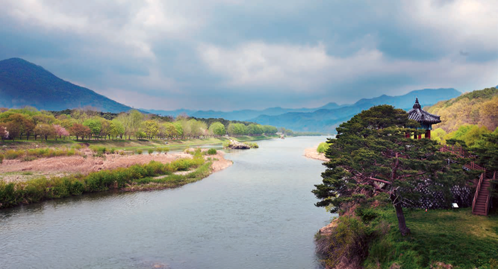충북 영동에서 받은 온화한 봄날의 향긋한 위로